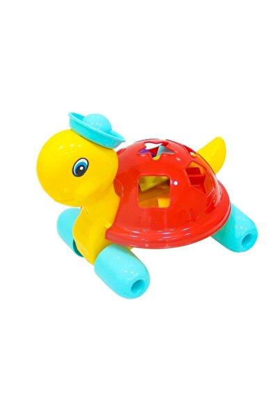 Bultak Kaplumbağa