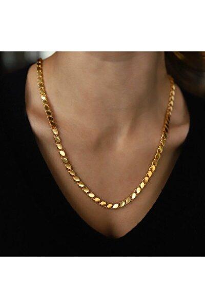 Altın Kaplama Pullu Arpa Zincir 60 cm