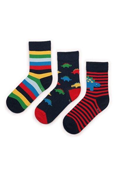 Dinazor Desenli 3'lü Çocuk Çorap