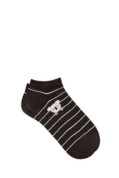 Koala Işlemeli Siyah Patik Çorap 197978-900