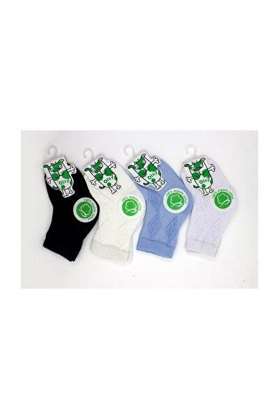 Bebek Soket Çorap (organik) 4'lü