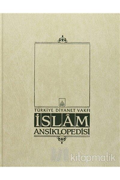 Islam Ansiklopedisi Cilt: 33 (ciltli)