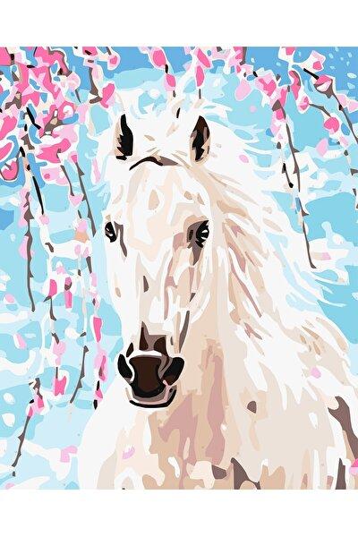 Sayılarla Boyama Tablo Seti Kanvas Fırça Boya Dahil 40x50 CM - Beyaz At