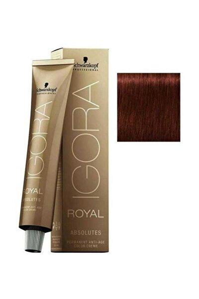 Açık Kahverengi Doğal Kızıl Igora Royal Absolutes Saç Boyası 5-80 60 Ml 4045787282337