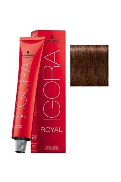 Kestane Kızıl Koyu Kumral Igora Royal Saç Boyası 6-68 60 ml 4045787207040