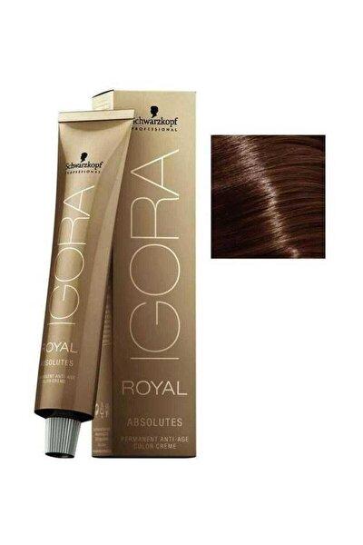 Koyu Kumral Çikolata Doğal Igora Royal Absolutes Saç Boyası 6-60 60 ml 4045787282436