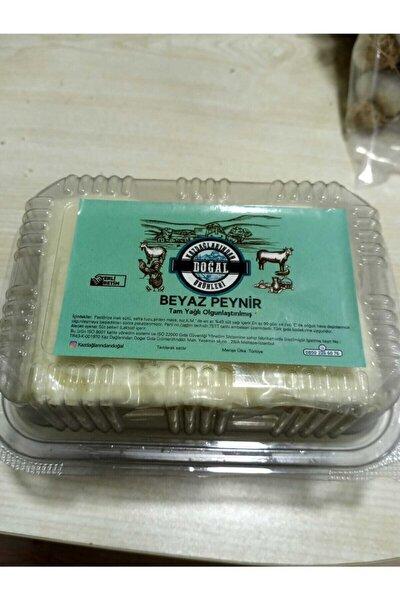 Ezine Peynir Tas Gibi Sert Sırdan Mayalı Dogal Yapım Kaz Daglarından Sofranıza