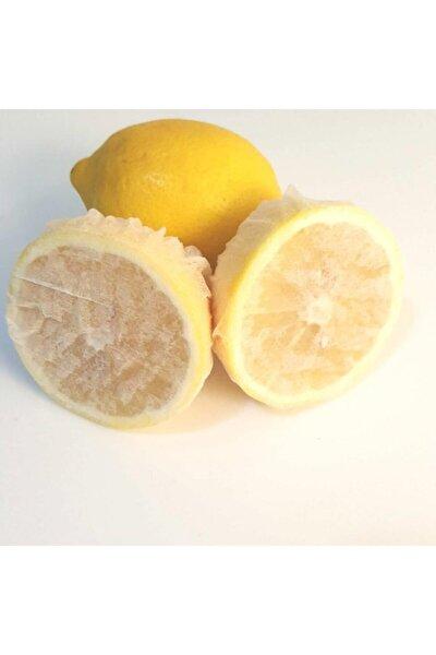 Limon Bonesi / 500 Adet / Bitki Çayı Bonesi