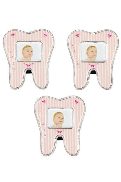 Çerçeve Diş Modeli Magnetli 3 Adet Pembe, Diş Buğdayı Hediyelik