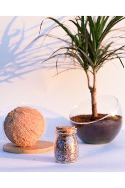 Rela'peel Coconut Banyo Tuzu - Bath Salt 100 Gr