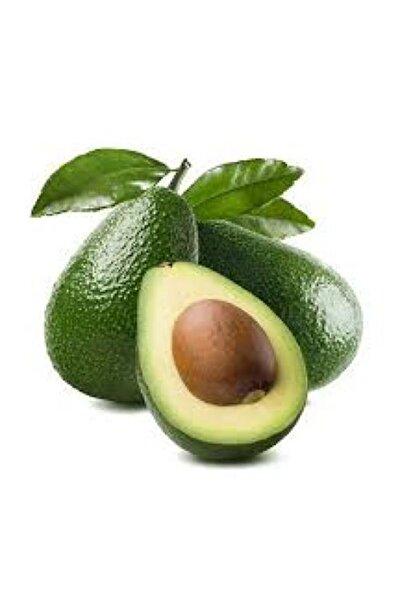 Avokado Bahçemizden ( Antalya-alanya Bahçelerinden Sofralarınıza ) 1 Adet