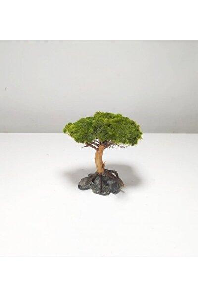 Ağaç Figürü Moss Sarılı 's'