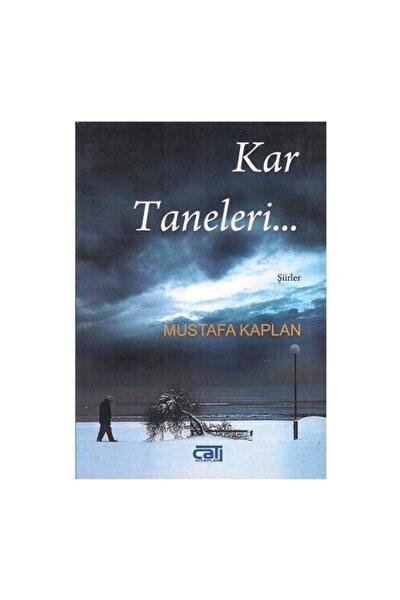 Kar Taneleri Mustafa Kaplan