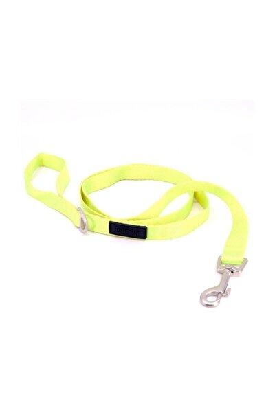 Lime Leash Köpek Gezdirme Tasması Small