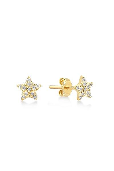 Kadın Altın 14 Ayar Pırlantalı Yıldız Küpe GLN300103