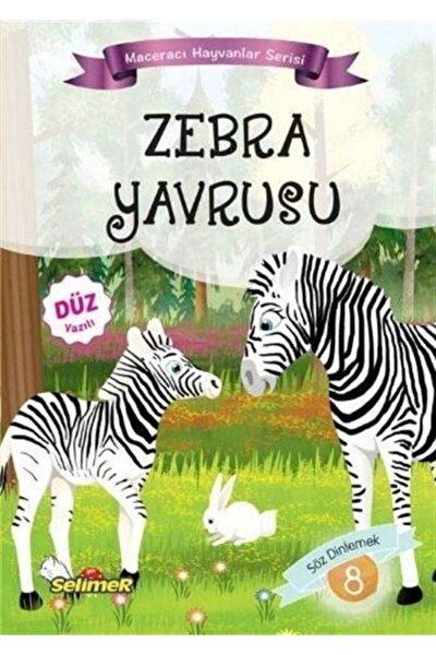 Zebra Yavrusu / Maceracı Hayvanlar Serisi 8