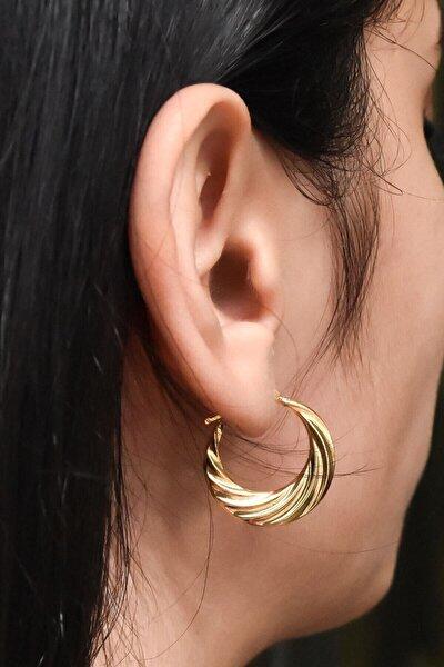 Kadın Gold Kaplama Licuala Desenli 925 Ayar Gümüş Küpe