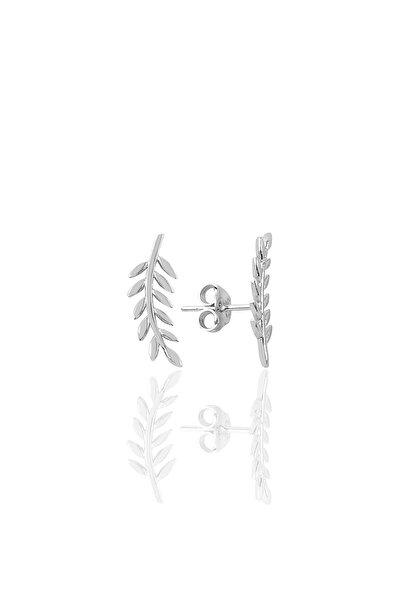 Gümüş Yaprak Modeli Küpe