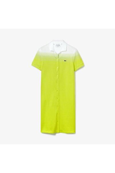 Kadın Sarı Polo Yaka Elbise