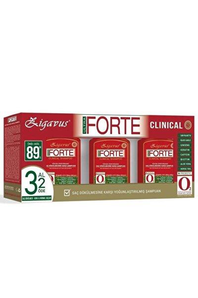 Forte Şampuan Kuru ve Normal Saçlar İçin 300ml 3 al 2 Öde