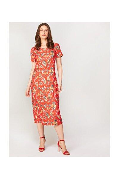 Kadın Nar Çiçeği Çiçek Desenli Örme Elbise 60284 U60284