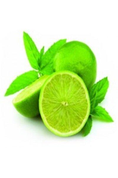 Lime 4'lü Paket
