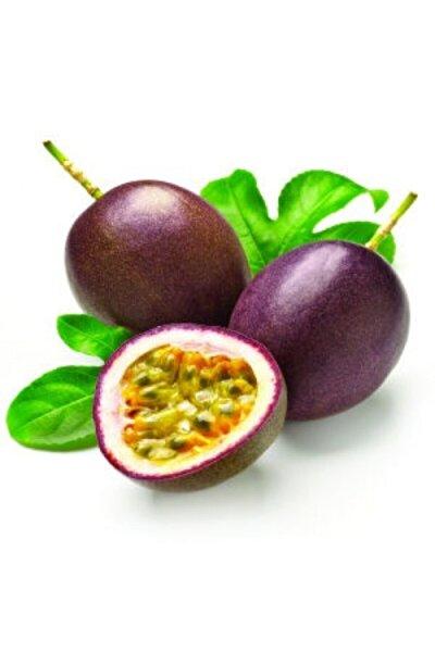 Passion Fruit Çarkıfelek 2'li