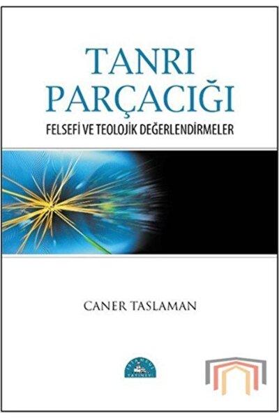 Tanrı Parçacığı Felsefi ve Teolojik Değerlendirmeler
