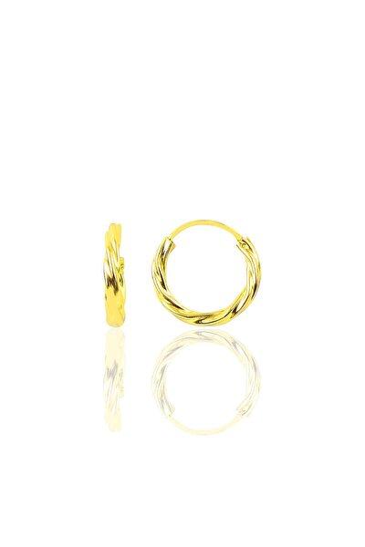 Gümüş Altın Rengi 14 Mm Burgu Modeli Halka Küpe