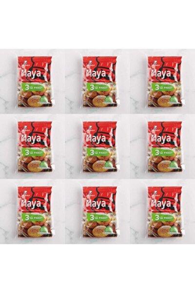 Glutensiz Instant Kuru Maya 3x10 gr 9 Paket