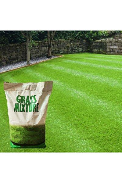 6 Karışımlı Ithal Çim Tohumu 10 Kg