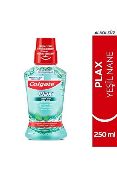Plax Taze Nane Alkolsüz Ağız Bakım Suyu 250 Ml