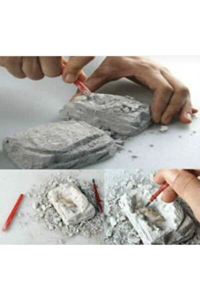 6 Adet.. Dinazor Serisi .. Arkeolojik Bilim Kazı Seti..