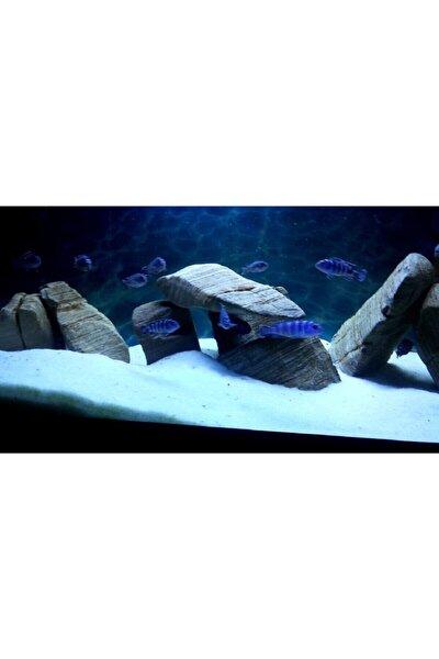 Akvaryum Kumu 1 - 2 Mm Beyaz Kalsit Silis 1 Kg