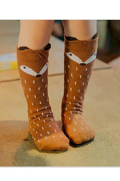 Unisex Bebek Kahverengi Tilki Desenli Diz Altı Çorabı
