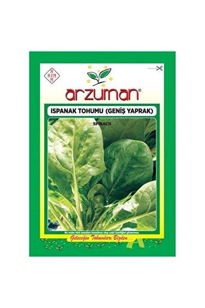 Geniş Yapraklı Ispanak Tohumu-25 Gram