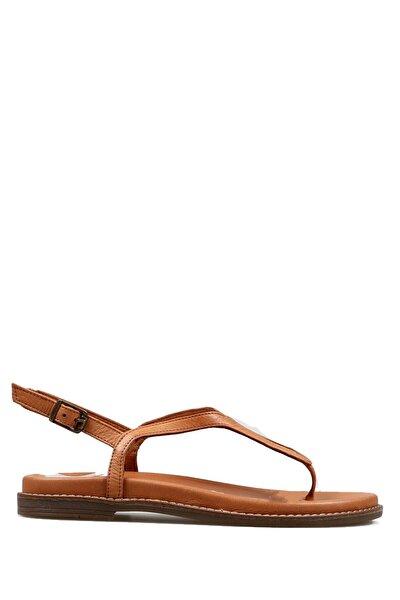 Taba Kadın Terlik / Sandalet 194 2069-z