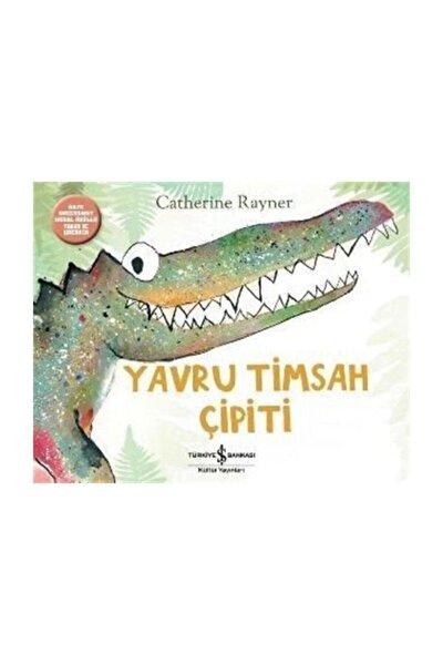 Yavru Timsah Çipiti Catherine Rayner