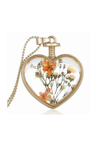 Yaşayan Kalp Kristal Cam Kurutulmuş Çiçek  Kolye Dr42