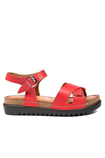 Kırmızı Kadın Terlik / Sandalet 229 1175-z