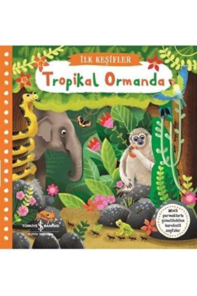 Ilk Keşifler / Hareketli Tropikal Ormanda