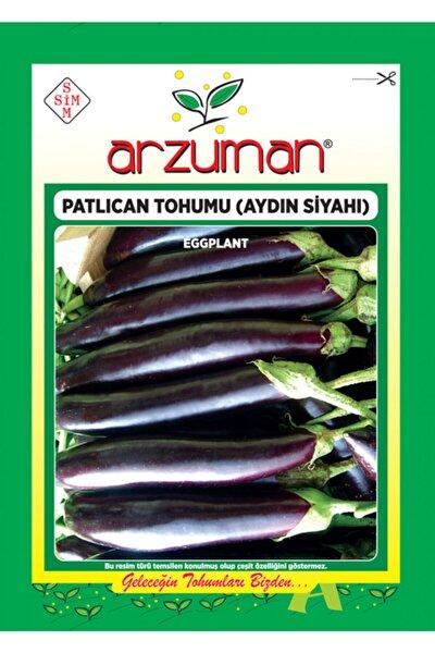 Patlıcan Tohumu Aydın Siyahı 55