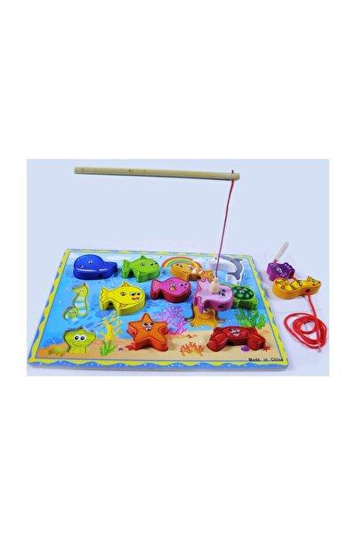 15 Parça Manyetik Balık Tutma Oyunu + Ipe Dizme Oyunu Ikisi 1 Arada Set