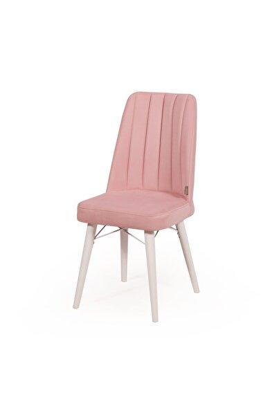 Salon Mutfak Ve Çok Kullanım Alanlı Sandalye