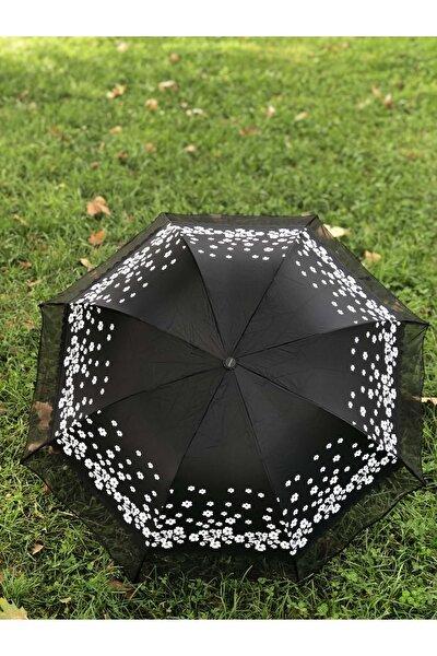 Rüzgarda Kırılmayan Kenarı Tüllü Papatya Desenli Siyah Kadın Şemsiye