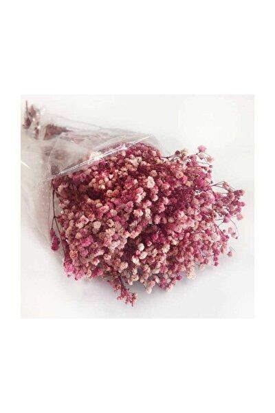 1 Demet Doğal Cipso Çiçek Pembe ( 18 Cm * 40 Cm ) ( 50 gram) Parti Süslemeleri