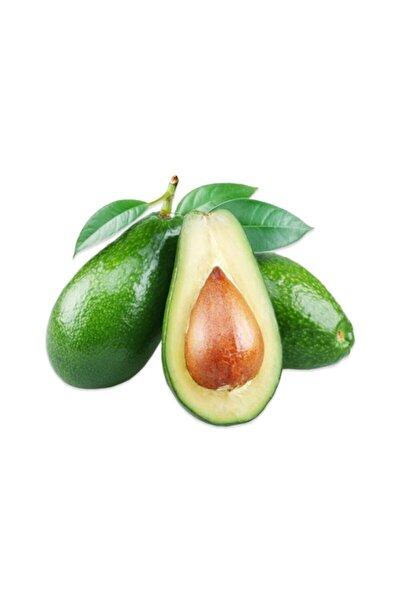 Avokado (3 ADET)