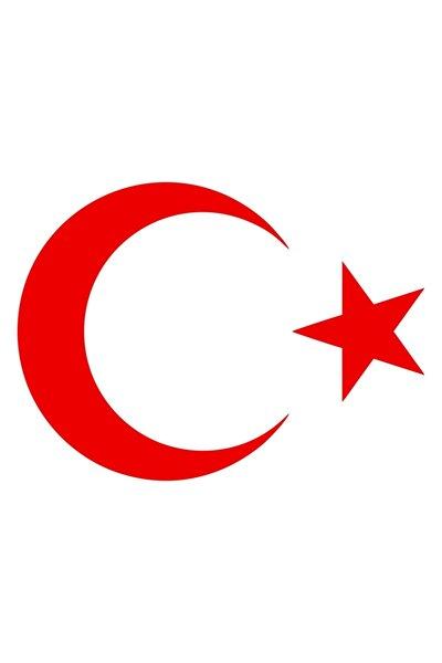 20 Cm Kırmızı Ay Yıldız Sticker Türk Bayrağı Sticker