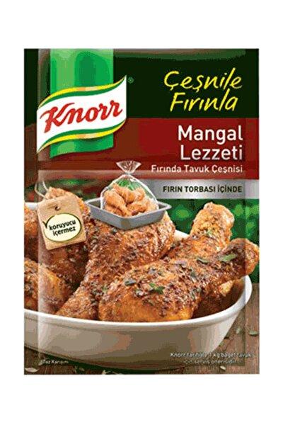 Mangal Lezzeti Tavuk Çeşni 32 gr