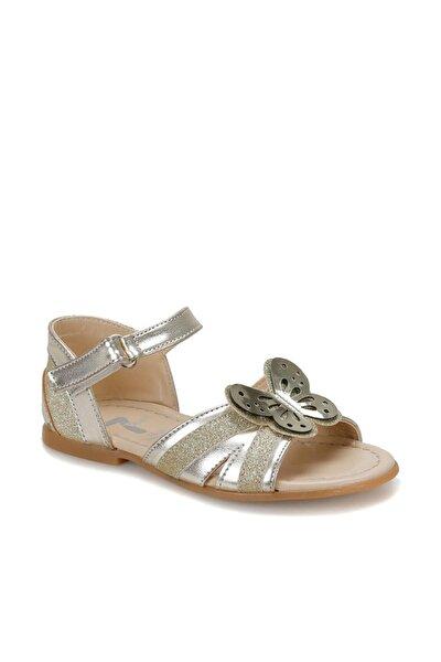 Firuze ALTIN Kız Çocuk Sandalet 100379687
